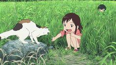 Wolf Children / Ookami Kodomo No Ame To Yuki-Anime