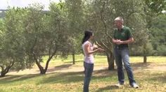 Working On A Farm In France! Jovial - YouTube