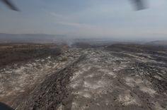 Autoridades ambientales y judiciales se comprometieron a poner un alto a las ambiciones de personas que provocaron un ecocidio en el cerro de La Silla, uno de los peores siniestros ...
