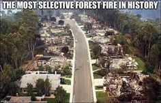 Scripps Ranch, CA cul-de-sac after the Cedar Fire of Operation Torch, California Wildfires, Fall From Grace, Flat Earth, How To Stay Awake, Conspiracy Theories, Imagines, Halloween, Thought Provoking
