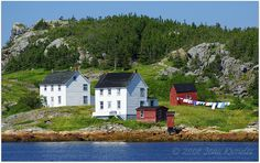 These houses at Salvage are among the most-photographed in Newfoundland. I love the laundry on the line! Newfoundland Canada, Newfoundland And Labrador, Song Of The Sea, Devon Uk, O Canada, Stone Houses, Garden Pool, Clothes Line, United States Travel
