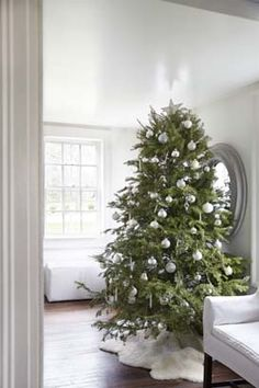 Getting ready for Christmas at my house...love the scent of the fir tree! photo by Marili Foras tieri