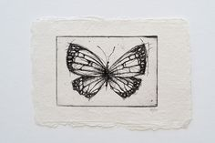 Hey, I found this really awesome Etsy listing at https://www.etsy.com/listing/225186465/butterfly-02-original-handpulled-etching