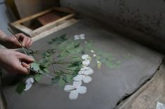 so many possibilities via The Ultimate Pressed Flowers Gardenista