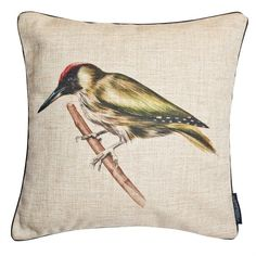 Joanna Allsop - Woodpecker Cushion (100 AUD) ❤ liked on Polyvore featuring home, home decor, throw pillows, owl throw pillow and owl home decor
