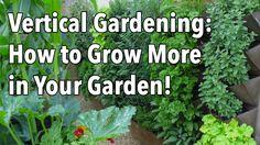 Vertical Gardening - Simple Ideas for a Vertical Vegetable Garden