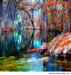 The world is a magical place...DREAM! (Cyprus Trees, Texas, USA)