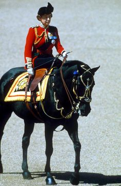 Long-standing love: The Queen, master of the side saddle seen here at Trooping The Colour, on her favourite black mare, Burmese (a gift from the RCMP). Hm The Queen, Her Majesty The Queen, Save The Queen, Riding Habit, Le Polo, Elisabeth Ii, Queen Pictures, Isabel Ii, Royal Life