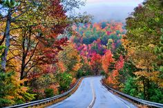 Fall colors on Fort Mountain along the highway to Ellijay Georgia on foggy, rainy day.