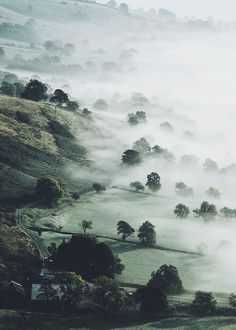 Misty morning in U.K. | by @dpc_photography_