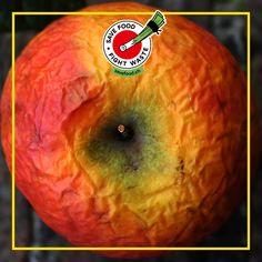 Seit Herbst sind sie wieder da, die frischen, saftigen Äpfel. Was du tun kannst, wenn dein schrumpeliger Apfel langsam an seine Grenzen kommt? Logo: Apfelmus zum Beispiel. Was machst du mit deinen schrumpeligen süssen Äpfeln? 🍎🍏 🍎🍏 Apple, Logo, Fruit, Fall, Diy, Apple Fruit, Logos, Apples