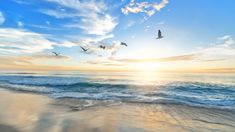 The sea   Wonder forever Strand Wallpaper, Beach Wallpaper, Relaxation Meditation, Meditation Music, Deep Relaxation, Piano, Nc Beaches, Sunset West, Nevada City