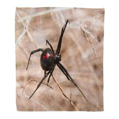 As you can probably guess by its name and the fact that they look like a supervillain's logo, black widow spider bites are no fun. These small spiders alre Termite Control, Pest Control, Scary Animals, Bed Bug Bites, Black Widow Spider, Spider Bites, Bed Bugs, What Happened To You, Photo Black