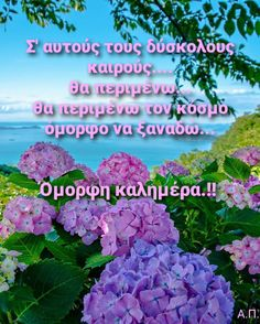 Good Morning Good Night, Greek Quotes, Wonderful Images, Amazing Places, Wonders Of The World, The Good Place, Greece, Spirituality, In This Moment