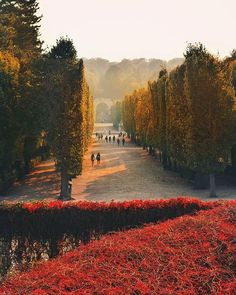 Wszystkie posty • Instagram Danube River, Imperial Palace, All Year Round, Vienna, Baroque, Austria, Did You Know, Public, Country Roads
