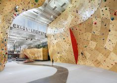 brooklyn boulders coworking space features towering rock climbing wall #coworking