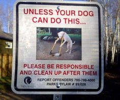 funny sign dog scooping poop