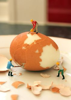 This Micro photograph was taken by Slinkachu, I think this photograph shows that we are making new things everyday and I like this photograph because I think it was very clever how he made it look like they were chipping off the shell of the egg because he made it look like it was builders doing there work.