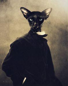 "Whimsical Anthropomorphic Altered Vintage Photo Black Siamese Cat Collage Shakespeare's, ""Othello"""