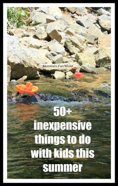 Momma's Fun World: 50+ fun things to do for Summer