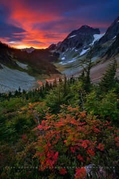 """""""Early fall color on a spectacular morning at Cascade Pass in North Cascades National Park, Washington."""" Photo by Sean Bagshaw."""