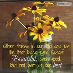 Blog post: Make Room for the Best. Other things in our life are just like that black-eyed Susan. Beautiful, even good. But not part of our best.