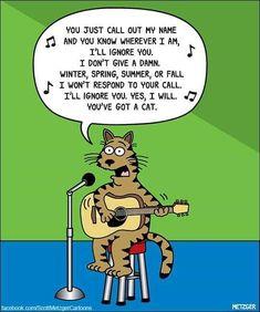 Funny Animal Memes, Funny Cats, Funny Animals, Cute Animals, Animal Humor, Funny Memes, Animal Antics, Hilarious, Funny Cartoons