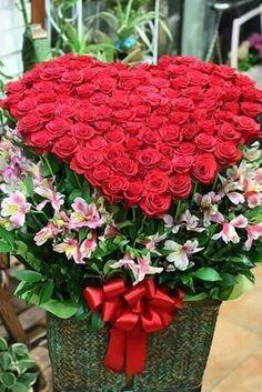 Beautiful Flowers Wallpapers, Beautiful Flowers Garden, Exotic Flowers, Amazing Flowers, Beautiful Roses, Happy Birthday Cake Images, Happy Birthday Flower, Flowers Gif, Outdoor Flowers