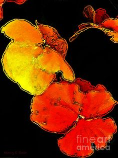 'Red Hot Flower Pop' Fine Art Photography/Digital Abstract by Nancy Stein. Nice pop of bright yellow-orange vivid color against a dark background, well done.