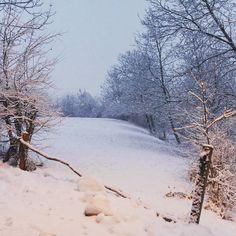 Magia! #snowflake #snow #trentinodavivere #winter #falchettolovers #falchetto #neve #mountains #vacanzarelax #silence #letitsnow @valdinon @visittrentino @trentinodascoprire