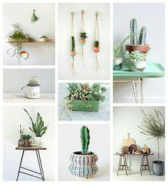 Plant loves