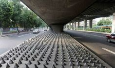 Reminder! Anti-homeless spikes. Humans are the most inhumane of all.