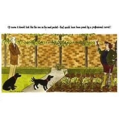 Annie Tempests hilarious gardening card ' Of course it doesn't look like the one on the packet, that would have been posed by a professional carrot!'