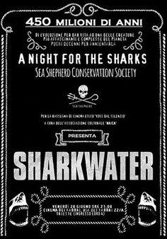 Proiezione n. 3. Documentario SHARK WATER. Serata SEA SHEPHERD. venerdì 20 giugno 2014 (www.associazionenaica.blogspot.it)