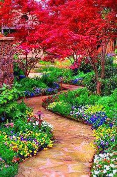 ⚜ Lovely garden
