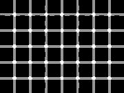 This is a variation of the Hermann Grid where black dots appear and disappear at the intersections of the gray lines. Interestingly enough, if you cock your head at a 45 degree angle the effect is reduced (but not eliminated).