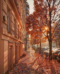 Orange Aesthetic, City Aesthetic, Travel Aesthetic, Aesthetic Sense, Aesthetic Vintage, Photo Pour Instagram, Autumn Scenery, Autumn Cozy, Autumn Fall