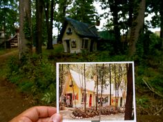 enchanted forest abandoned - Google Search