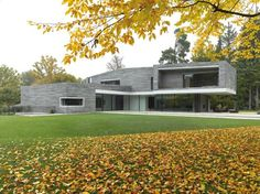I like the way the stone gray interacts with nature.... Clean and simple forms of the house.