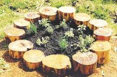 Cute garden! And you could try growing mushrooms out of the border logs