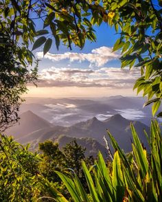 Mount Warning Summit Tweed Range South Australia, Western Australia, Life Is An Adventure, Byron Bay, Travel List, Gold Coast, Clouds, South Wales, Country