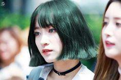 Hani•안희연