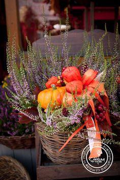 Kolekce | Podzimní kolekce | Květiny Petr Matuška Brno - dekorace, floristika, řezané květiny, svatební kytice Outdoor Flower Planters, Outdoor Flowers, Container Gardening, Gardening Tips, Garden Club, Fall Decor, Farmhouse Decor, Diy And Crafts, Halloween