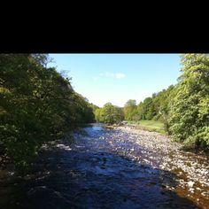 River Wharfe through Bolton Abbey