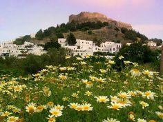 Spring in Lindos, Rhodes