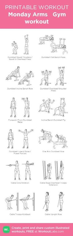 Monday Arms Gym workout: my visual workout created at WorkoutLabs.com • Click through to customize and download as a FREE PDF! #customworkout by jeannine