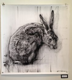 European Brown Hare --April Coppini's beautiful charcoal drawings will be up in the gallery through April at Valley Rowe