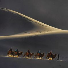 National Geographic ( Photograph by Michael Yamashita - Mingshashan - the Singing Sand Dune of Dunhuang Desert Dream, Desert Life, Dunhuang, Countries Of The World, Jojo's Bizarre Adventure, Great Photos, National Geographic, Wonders Of The World, Airplane View