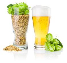Beer Market in India