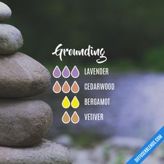 Grounding - Essential Oil Diffuser Blend